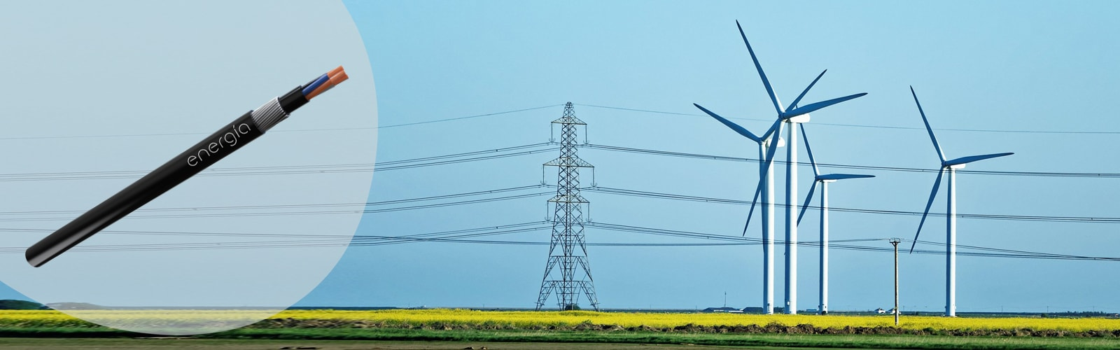 Energia Cables And Wire Harness Exporting Across The Globe Flexible Belonging To
